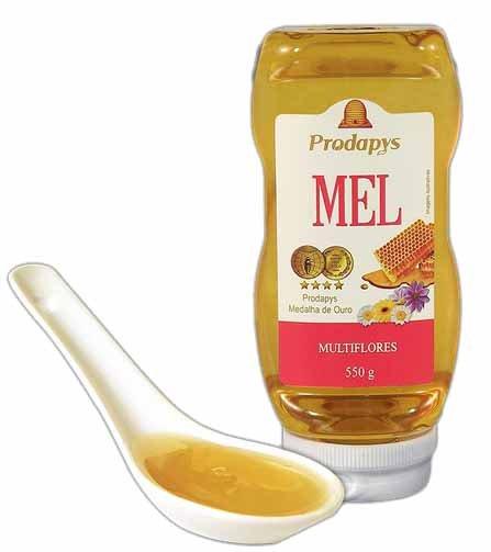 Mel bisnaga Multiflores  550 gramas Prodapys