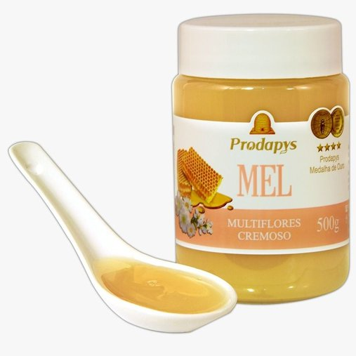 Mel pote Multiflores Cremoso 500g Prodapys